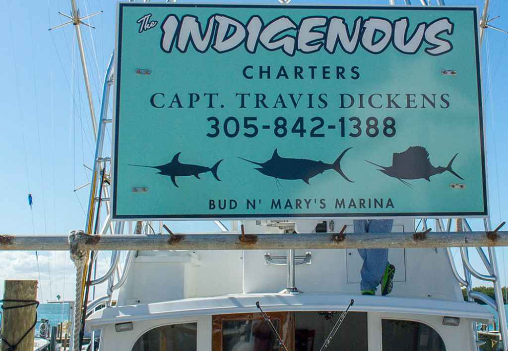 Florida fishing charters at bud n marys marina in for Bud and mary s fishing report